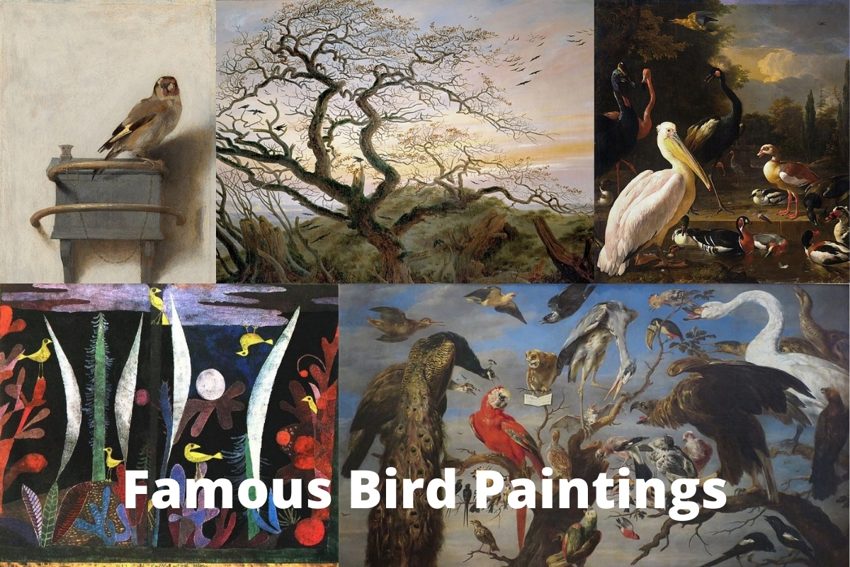 Famous Bird Paintings
