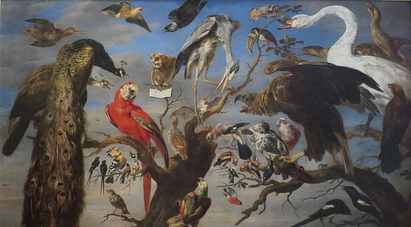 Concert of Birds - Frans Snyders