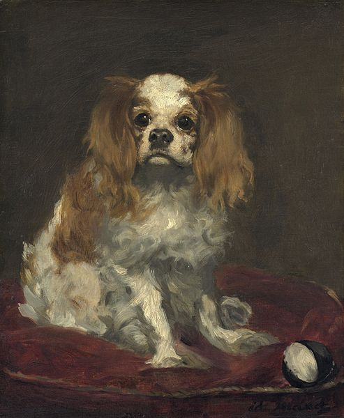 King Charles Spaniel - Manet
